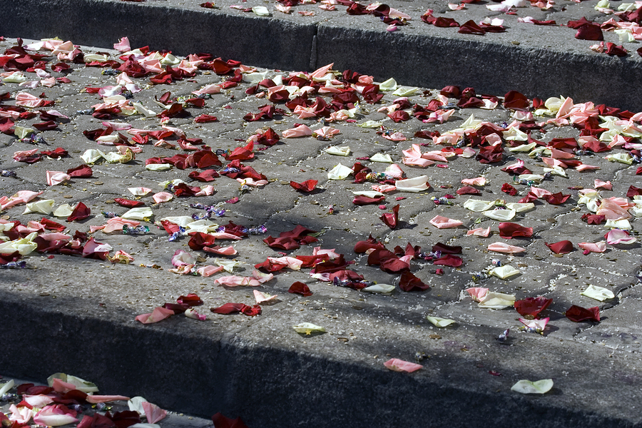 bigstockphoto_Stair_Full_Of_Rose_Petals_5156053