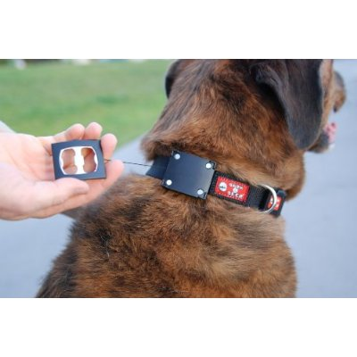 dog collar bottle opener
