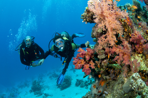 plan the perfect adventure honeymoon