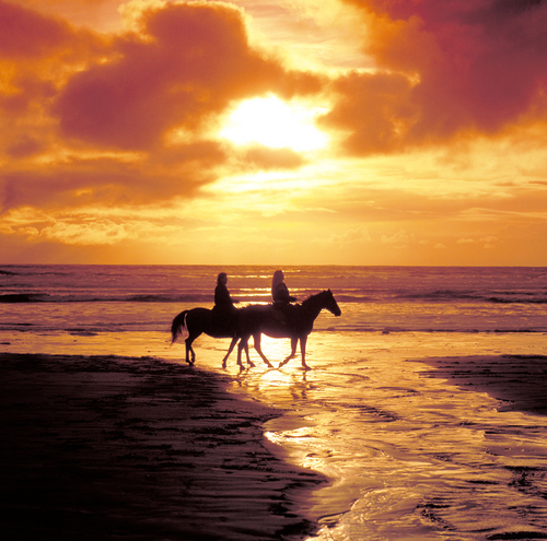 honeymoon horseback riding